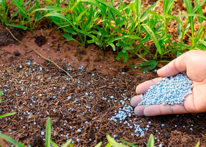 Что такое минеральное удобрение?