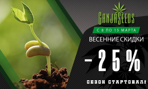GanjaSeeds, GanjaVIP и Gribo4ek предлагают встретить весну вместе!