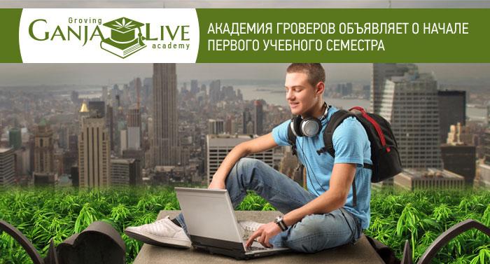 Академия гроверов объявляет о начале первого учебного семестра