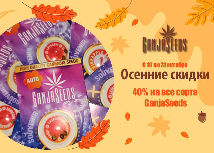 Октябрьская жара от GanjaSeeds: скидка 40 % на все сорта!