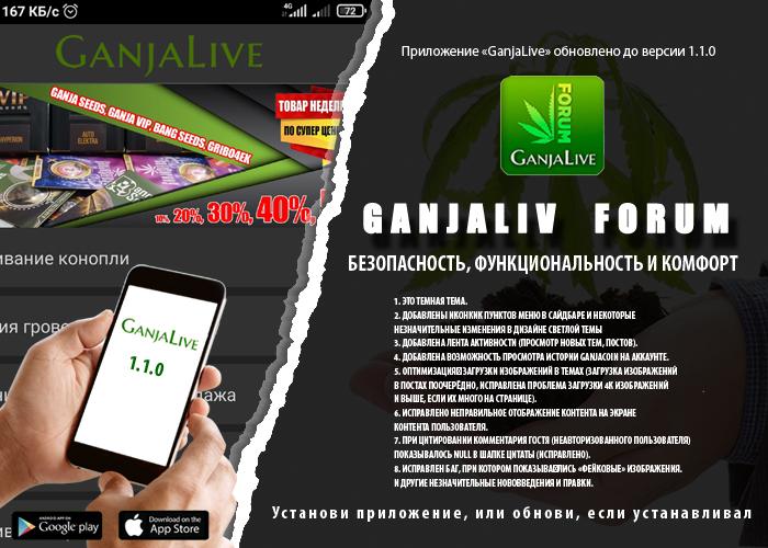 Обновление приложения форума GanjaLive