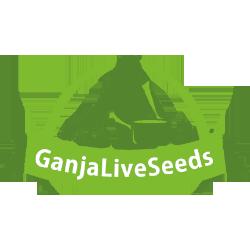 Ganja Live Seeds - семена конопли